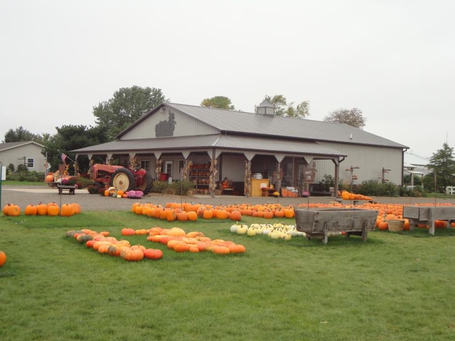 Radar Family Farm's, jus a pumpkin away
