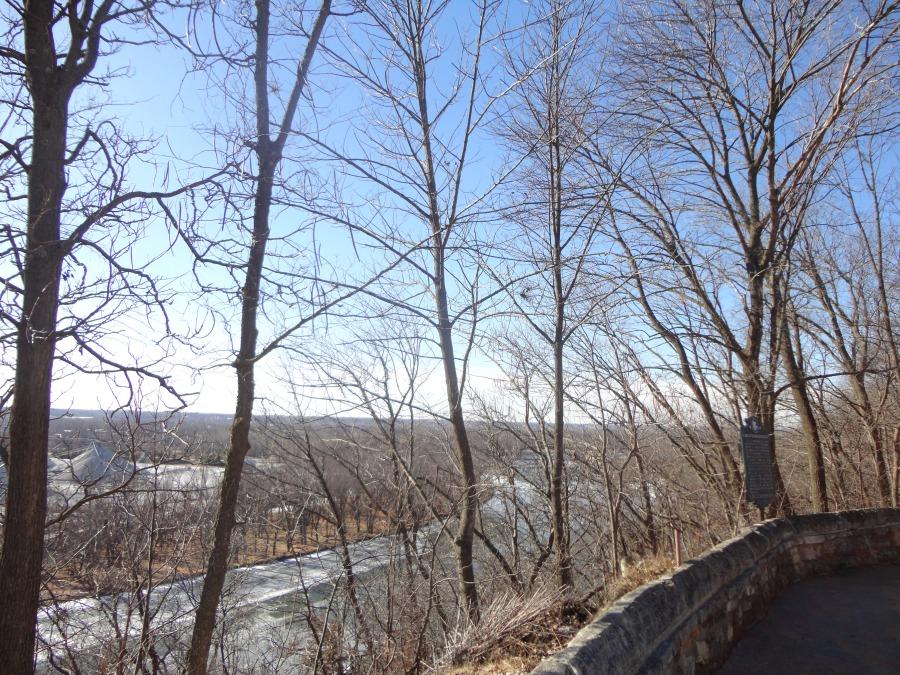 Eagles along the Rock River
