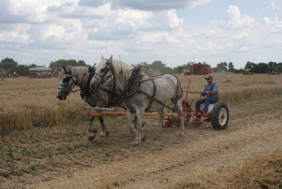 Penfield Illinois, Planning for antique tractor shows - Picture by Keith Ladage