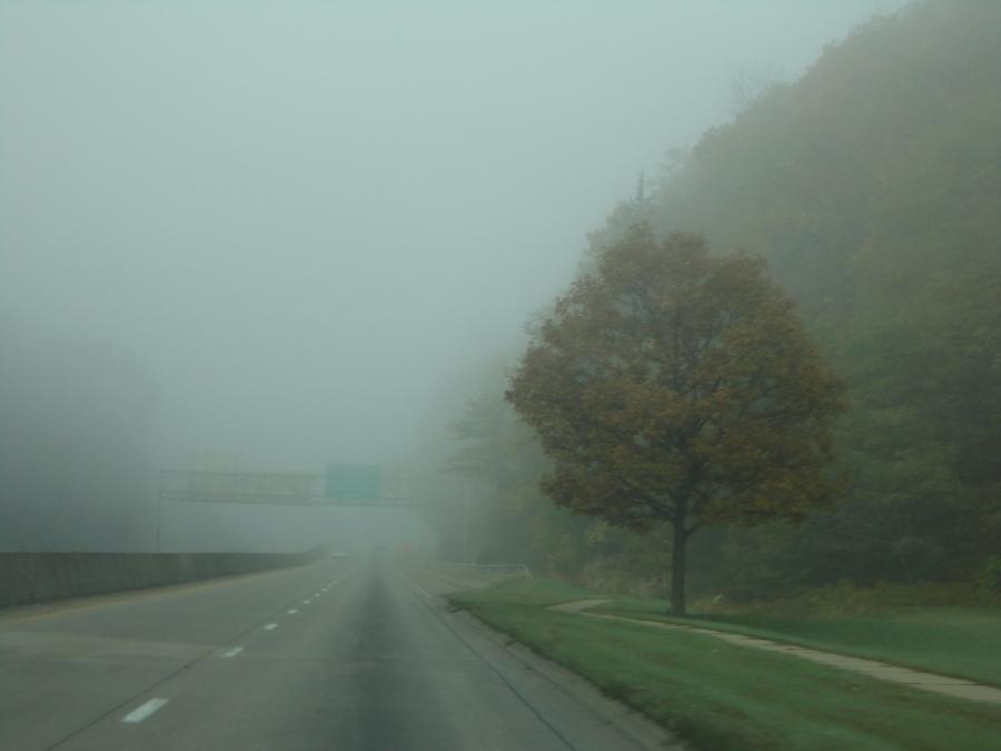 Driving through the mist